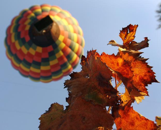 Elkezdődött az ősz. Legyetek Boldogok!